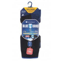 Oderuodolné ponožky Blueguard